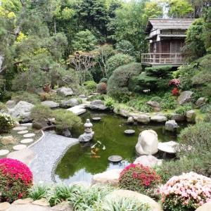 14New-Hannah-Carter-Japanese-Garden-March-2012